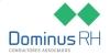 Dominus Consultores Associados