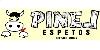 Pinel Espetos